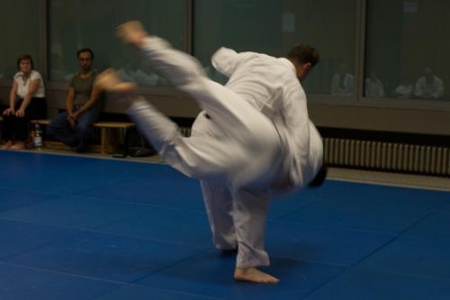 Hapkido Seminar 2016